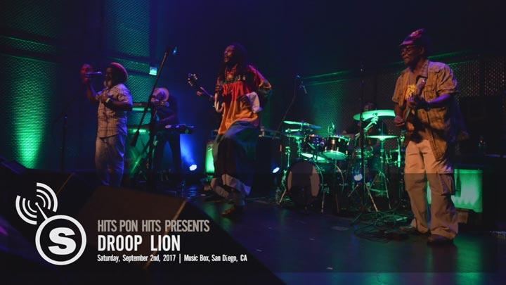 Droop Lion - San Diego, CA
